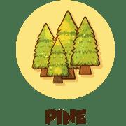 pine ico