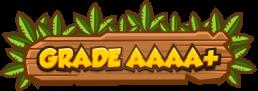 Grade AAAA+